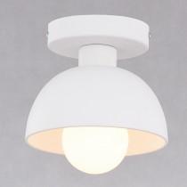 白色圓頂鐵罩吸頂燈